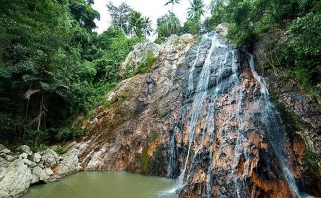Selfi mortal: muere turista tras caer en una cascada en Tailandia